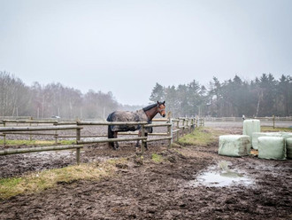 Mud Management: Careful Planning and a Work in Progress
