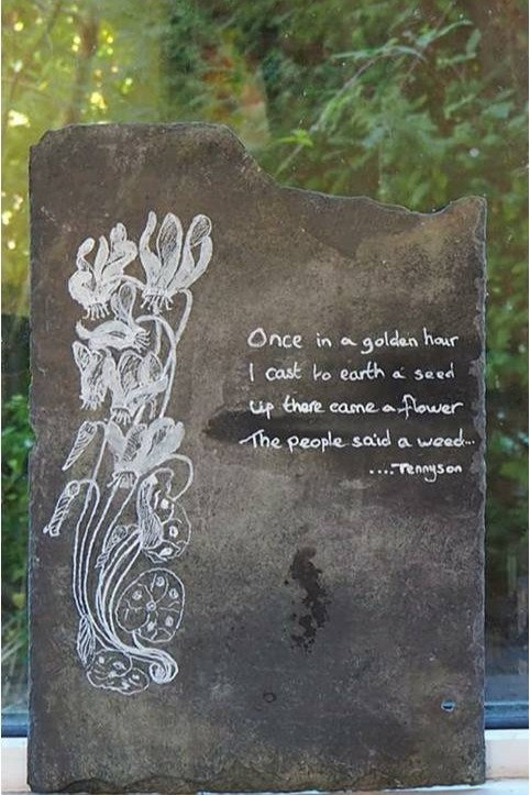 Convolvulus Poem by Fiona Melford
