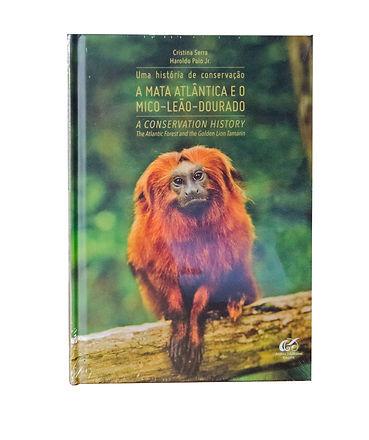 mico leao dourado.jpeg