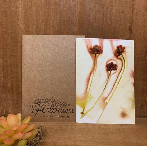 Cartão Botânico - R$ 10