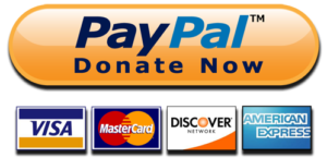 PayPal-Donate-Button-High-Quality-PNG-e1498490436982-300x145.png