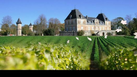 """À Meursault, en Bourgogne: Un spa """"Grand Cru"""" au cœur des vignes"""