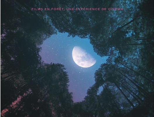 Branche et Ciné, le festival de cinéma en forêt : L'édition 2021 commence aujourd'hui