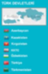 turk-devletleri.png