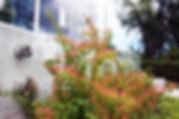 PLANTA,Carcasole-08.jpg