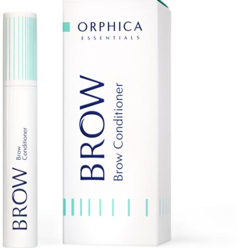 Augenbrauen Serum Brow Conditioner
