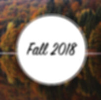 Bearcat Chat fall 2018 button.jpg