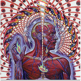 Tool - Lateralus.png