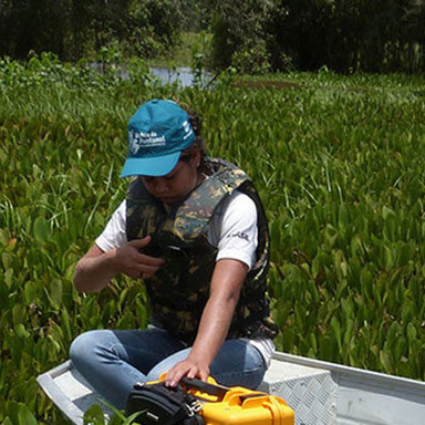 Biodiversity conservation research, management and the D.S.