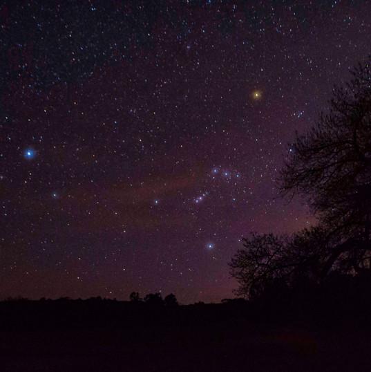 Orion over Quarai