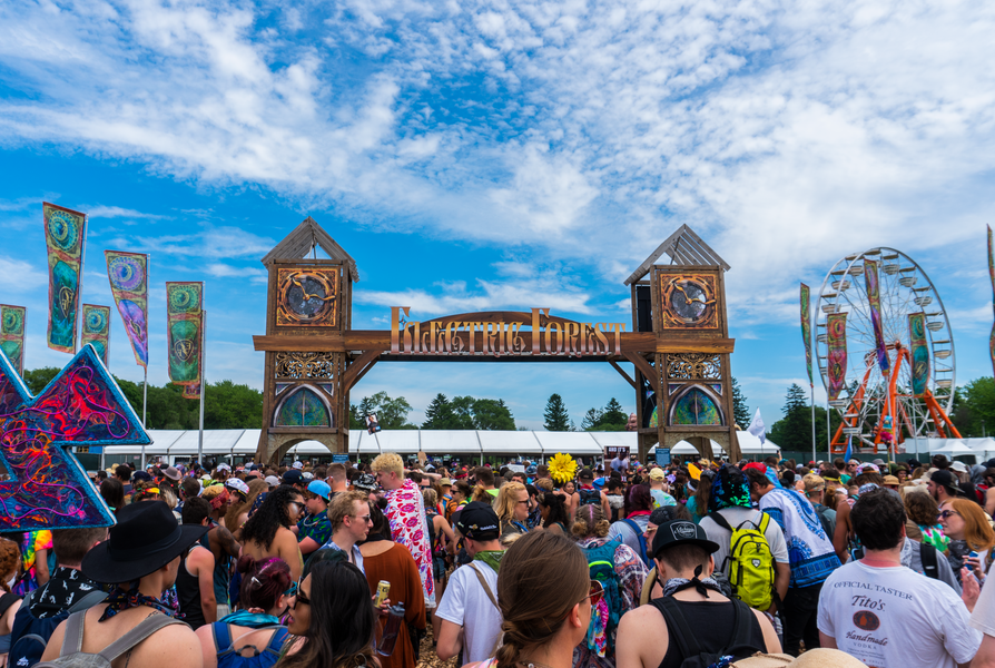 Gate into Electric Forest
