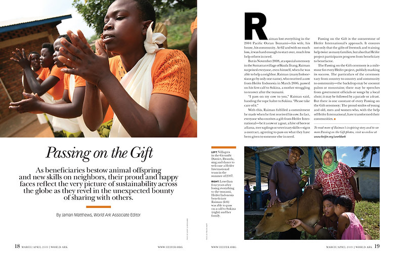 Steven Powell Design. Heifer feature spread. Photo edit and design.