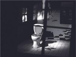 Toilet and Gun