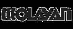 OLAYAN-Logo.png