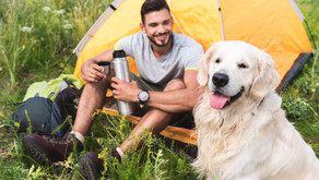 Advice for Camping With Your Pet