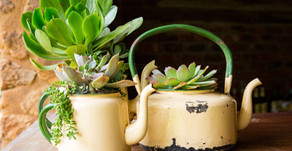Upcycling - Ways to Reuse Old Junk