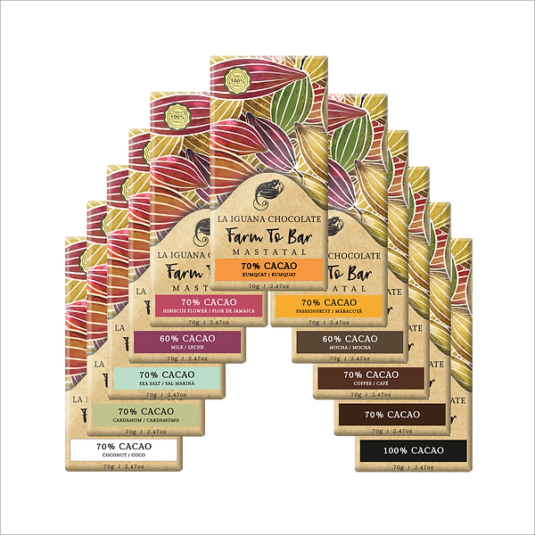 large chocolate bar flavours.png