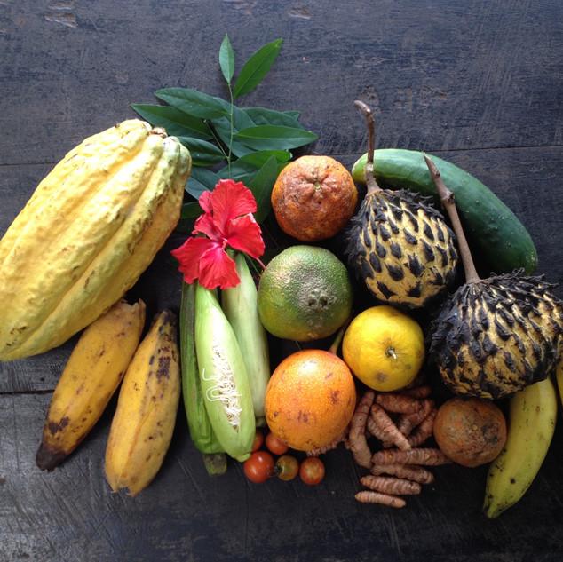 Tropical Fruit Harvest