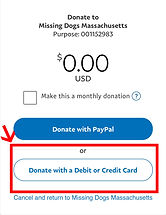 pay with Paypal using CC.jpg