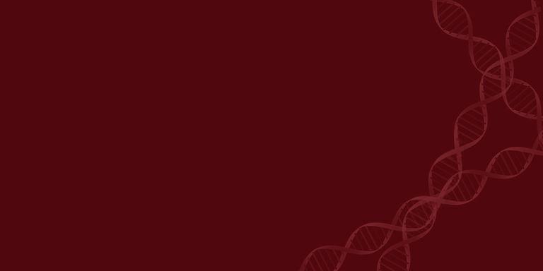 Website Banner (long) (crimson).jpg