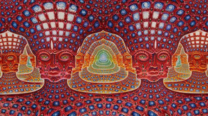 DMT and the Marvels of Consciousness