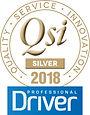 QSI-logo-2018-Silver.jpg