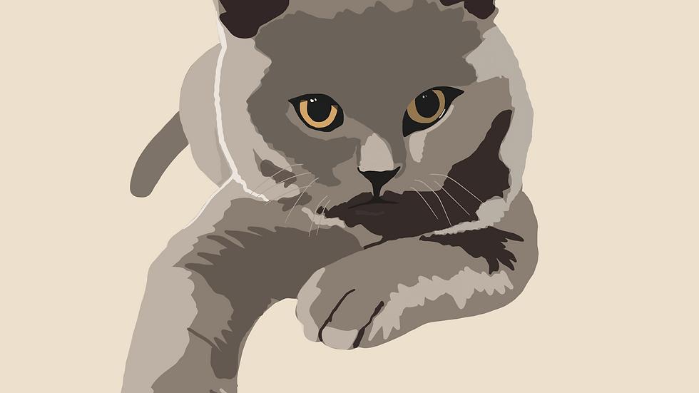 Pet Illustration Digital Version