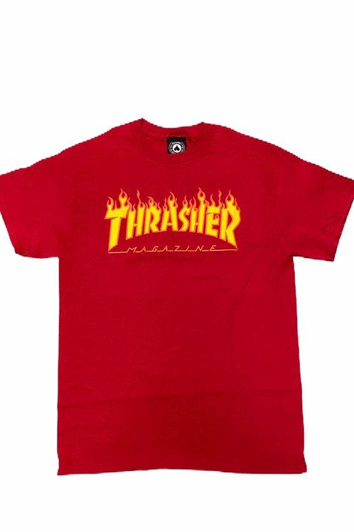 Thrasher Cardinal