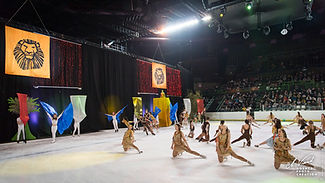 362_gala_patinage_110519.jpg