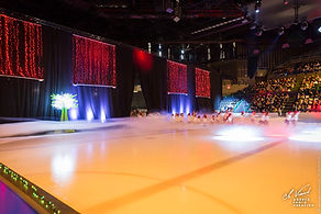 009_gala_patinage_110519.jpg