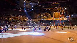 290_gala_patinage_110519.jpg