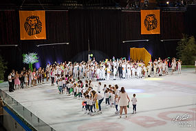 387_gala_patinage_110519.jpg