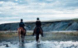 Horse riding on friendly horses