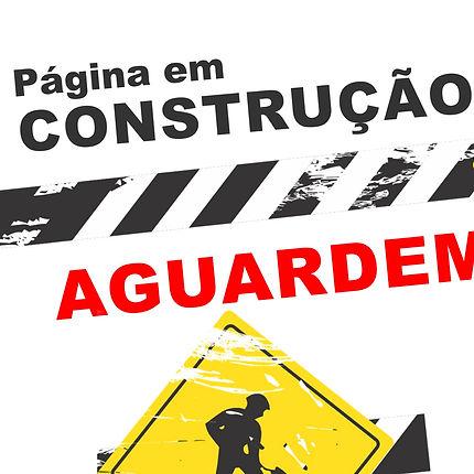 Nunca-coloque-um-site-em-construção-no-a