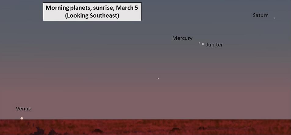 Screen Shot 2021-02-21 at 9.23.55 AM.png