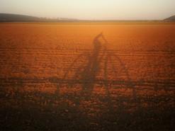 field_biker_wix.jpg