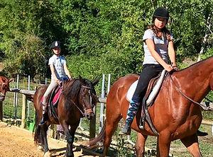 Web-cheval-©Ecuries-de-la-Fontaines.jpg