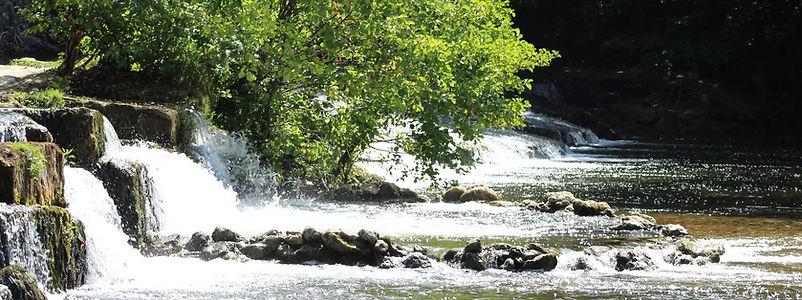 Rivière Dronne