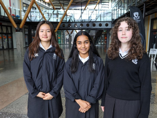 Programming competition success for Avcol girls