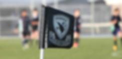 Sport Flag.jpg