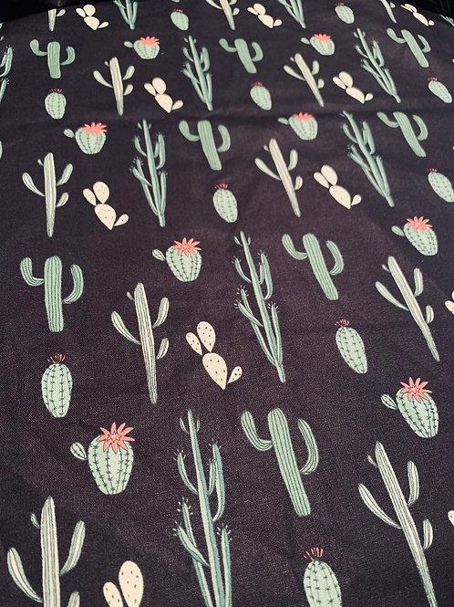 Cactus sur fond noir
