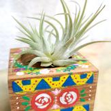 Tribal Floral Design