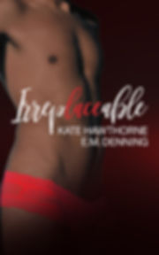Irreplaceable eBook Cover.jpg