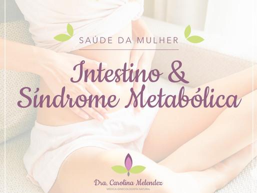 Síndrome Metabólica e o Intestino