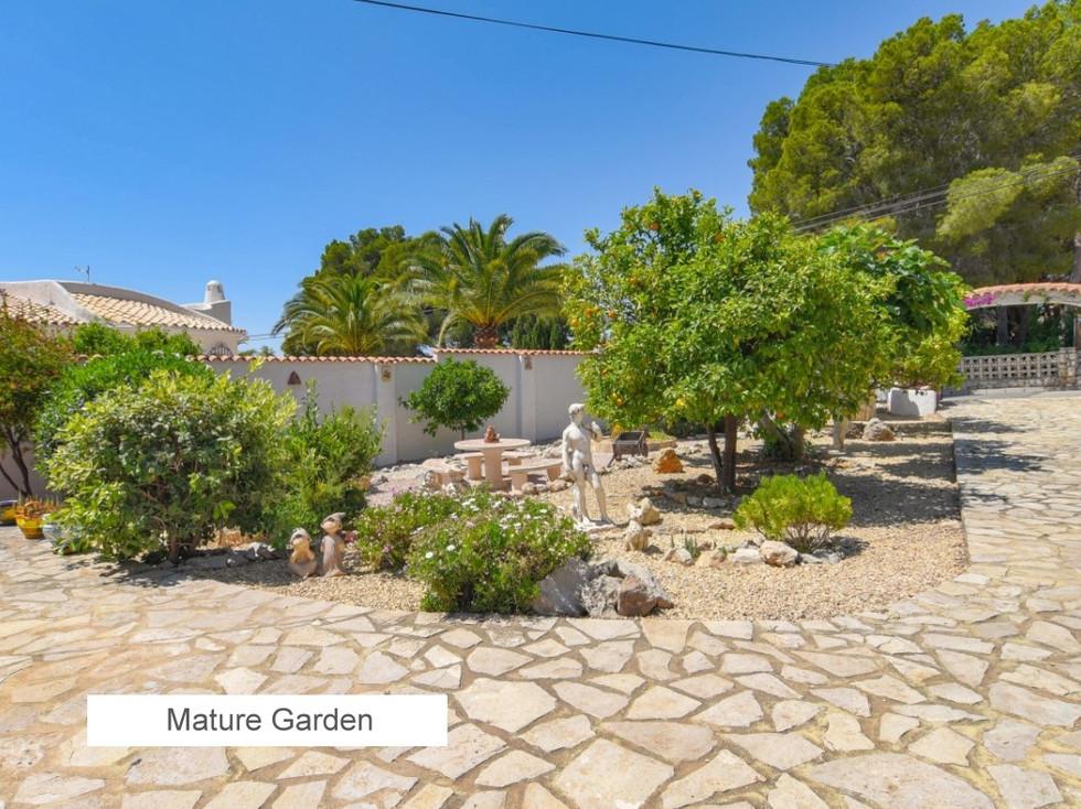 13 Mature Garden.jpg