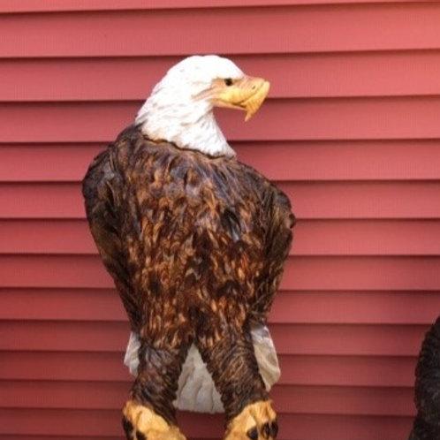 Perched Freedom Eagle