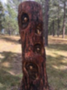 racoon carving.jpg