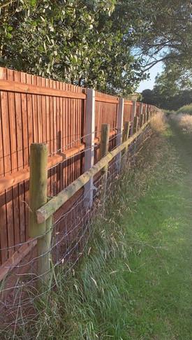 Closeboard Run Fencing.jpg
