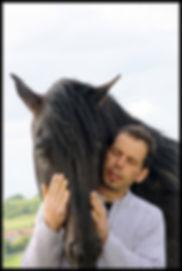 Elevage chevaux PRE, acheter cheval espagnol, cheval pure race espagnol à vendre