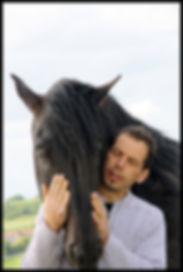 Elevage chevaux PRE, acheter cheval espagnol, cheval pure race espagnol